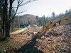 Forest Management and Land Clearing